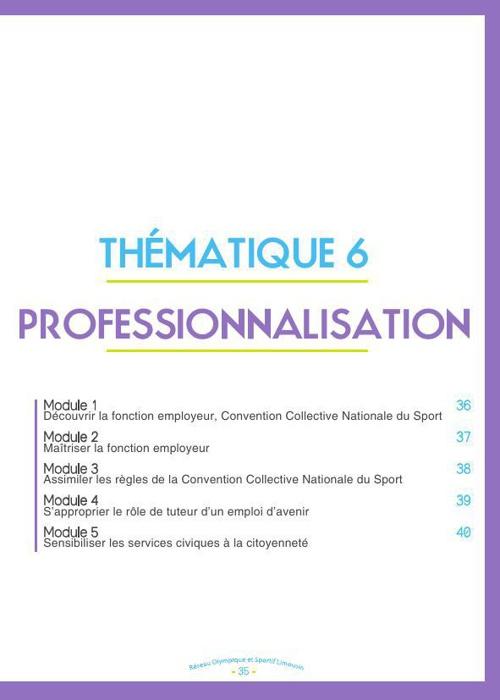 T6 Professionnalisation