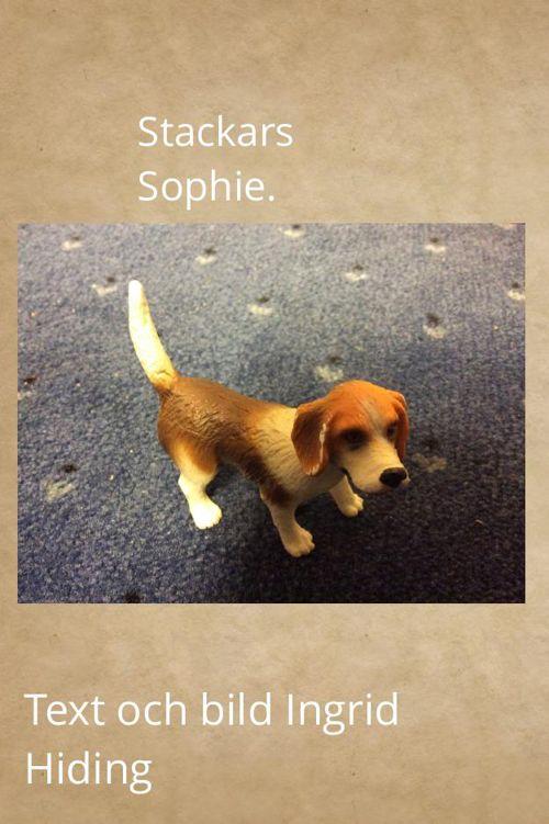 Stackars Sophie