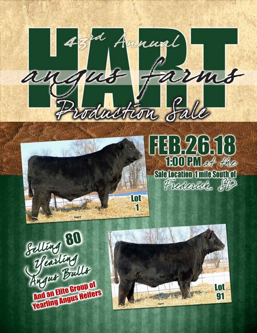 Hart Angus Farms Production Sale