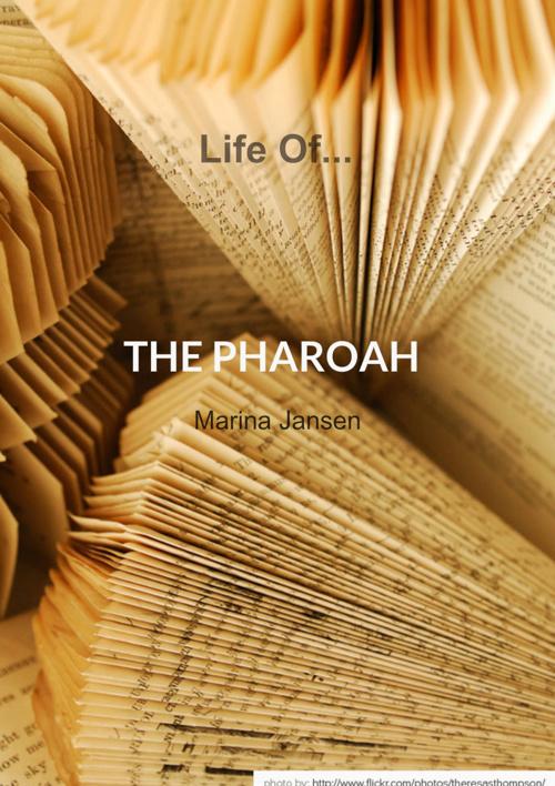 Life of a Pharaoh