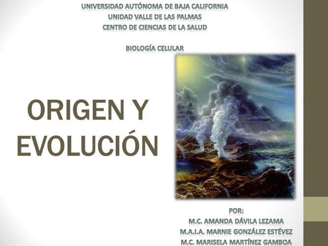 3 origen y evolucion 2013-2
