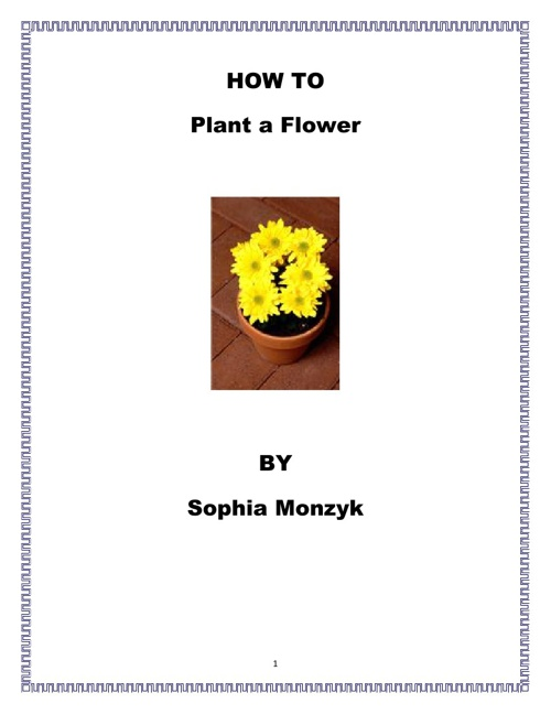How to Plant a Flower by Sophia Monzyk
