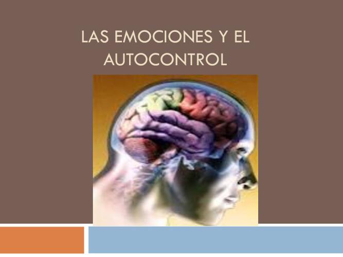 EL STRESS Y LAS EMOCIONES