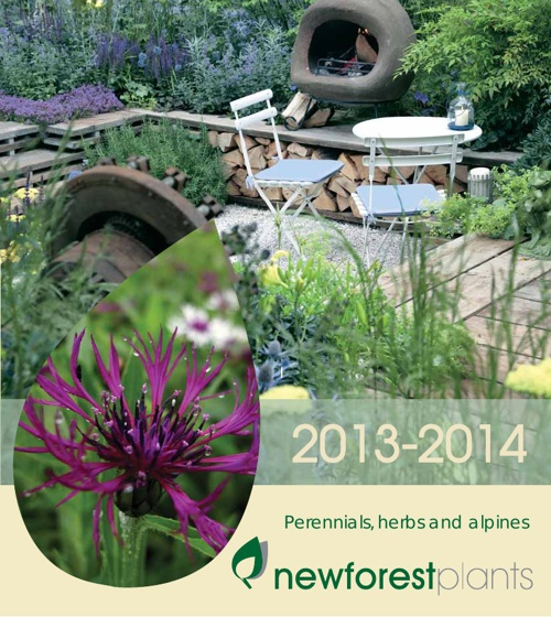 New Forest Catalogue 2013-14