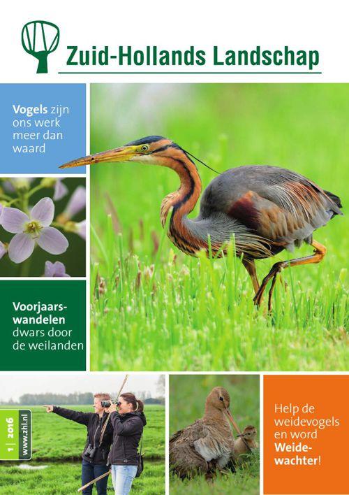 Tijdschrift 1-2016 | Zuid-Hollands Landschap