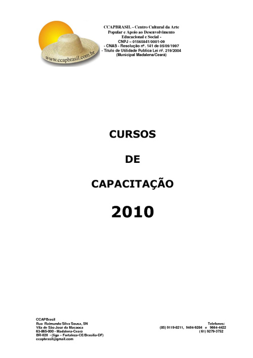 New Flip 3CURSOS DE CAPACITACAO - 2010
