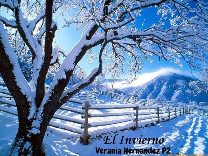 El Invierno ~ Verania Hernandez