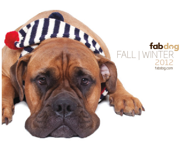 Fab Dog Fall Lookbook
