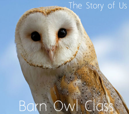 The Story of Us - Barn Owl Class