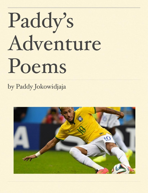 Paddy's adventure poem