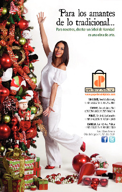 Papelera del Plata  Christmas 2011 Catalog