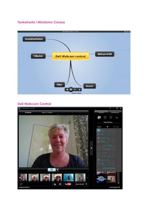 Webcam känslor