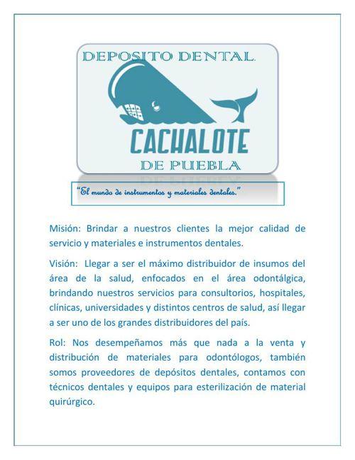 vision, mision y rol deposito dental cachalote de puebla
