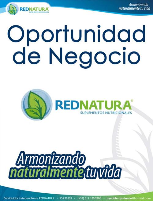 Catalogos-2013