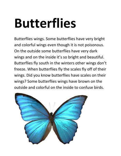 Alexa Butterflies