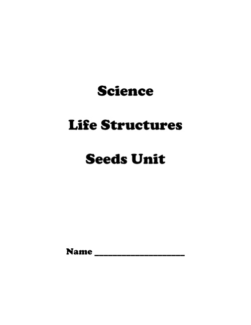 Science: Seed Investigations Notebook