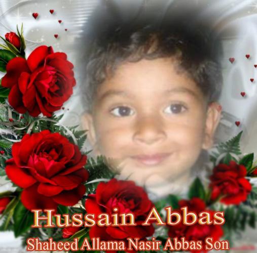 Hussain Nasir Abbas (Shaheed Allama Nasir Abbas Son)