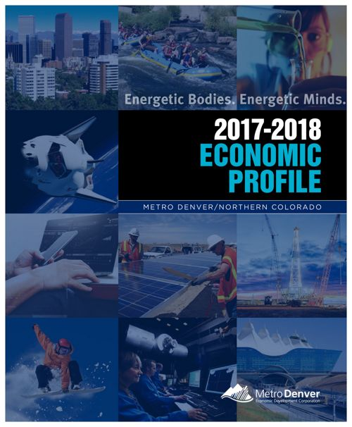 2017-2018 Economic Profile Brochure