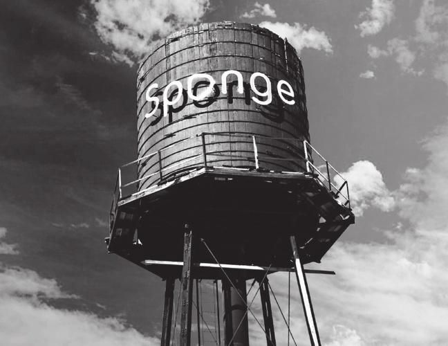 WetnWild  Sponge