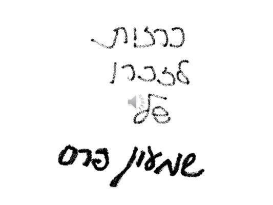 מדף התקשוב אריאל שרון חולון