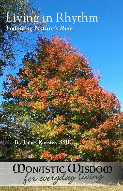 Fall_Insert_Nature-web1