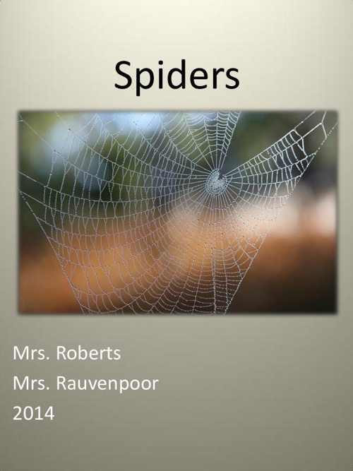 Spider Research Pt. I