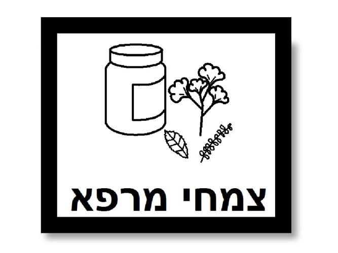 שימושי צמח הגרניום לאדם