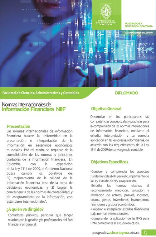 Diplomado_EN NIIF 2