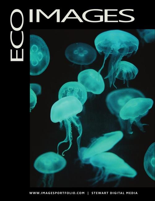 EcoImages - N1