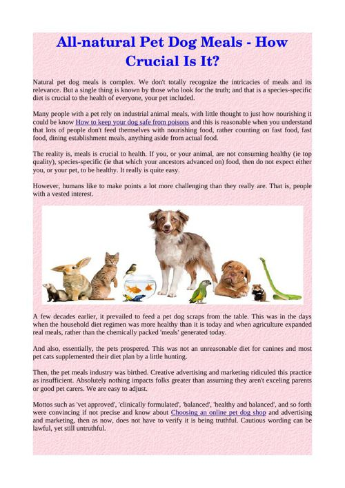 All-natural Pet Dog Meals - How Crucial Is It