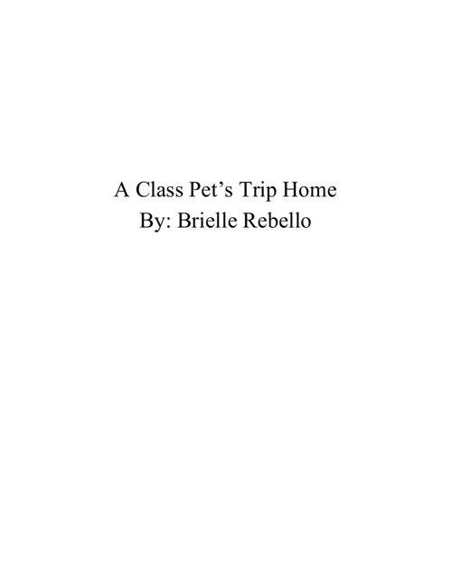 BRIELLEscompletebook (1)