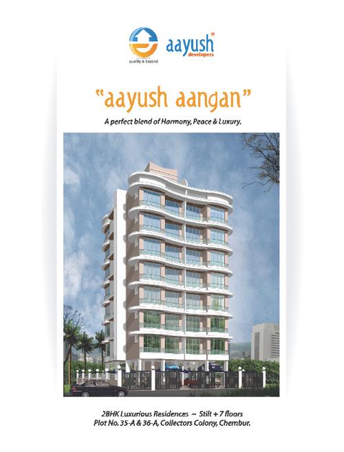 Aayush developers