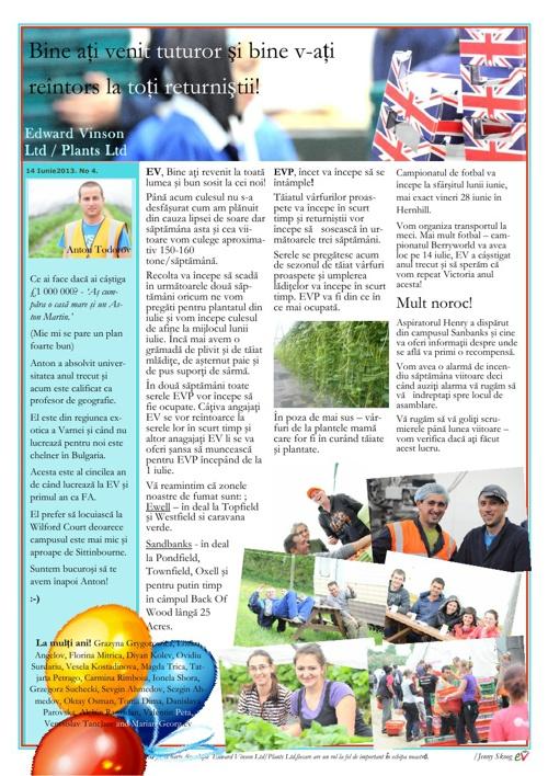 Romanian Newsletters