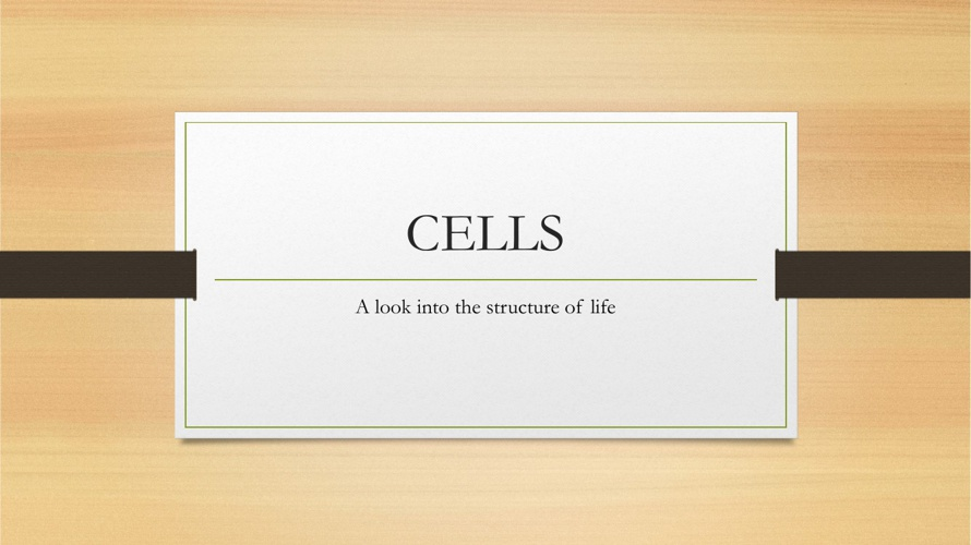 Cell Organelle Assestment