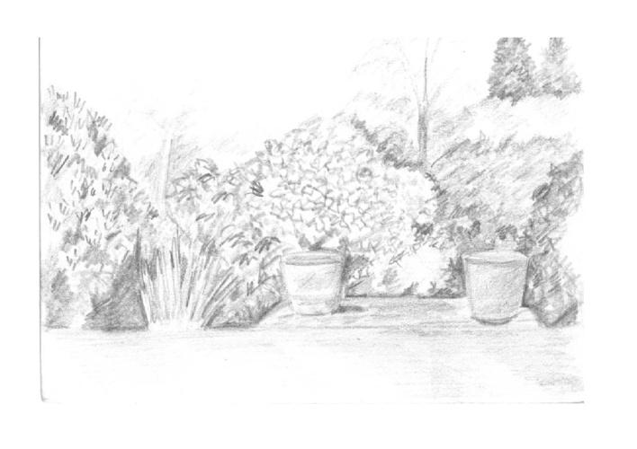 Sally Gildert Pencil Drawings
