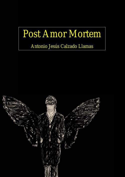 POST AMOR MORTEM
