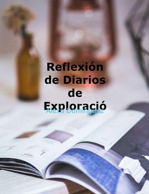 Reflexión de Diario de Exploración