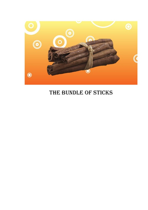 The bundle of sticks
