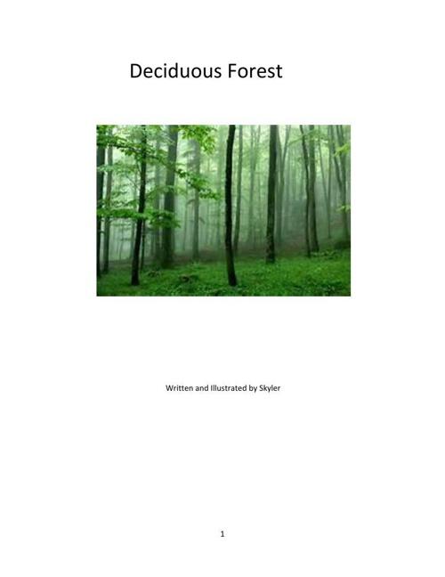 Deciduous Forest Skyler