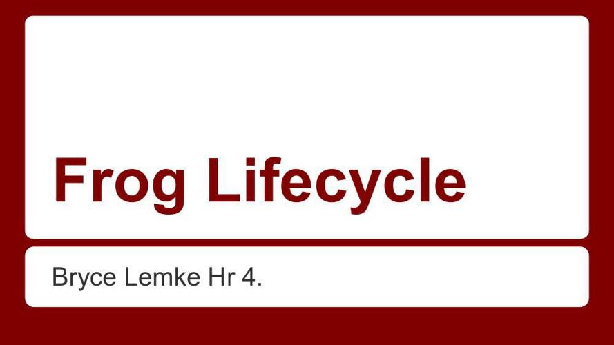 frog lifecycle