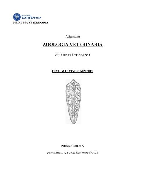 Práctico Phyllum Platyhelmyinthes
