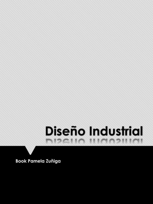 Book Diseño Pamela Zuñiga