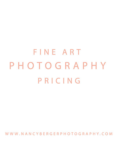 Nancy Berger Photography Pricing Guide