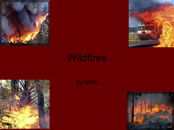 Wildfires by Tony
