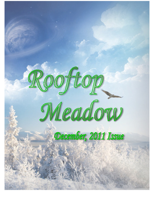 Rooftop Meadow Issue 2 In-Progress(December, 2011)