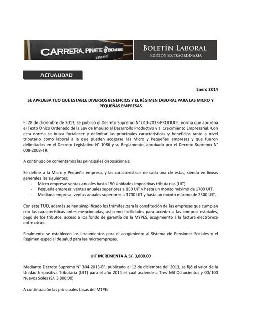 Boletín Extraordinario  - MICRO Y PEQUEÑA UIT