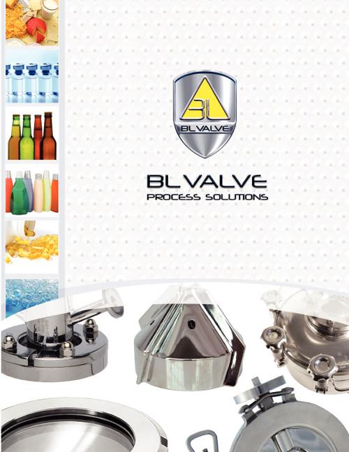 BL Valve Process Solutions