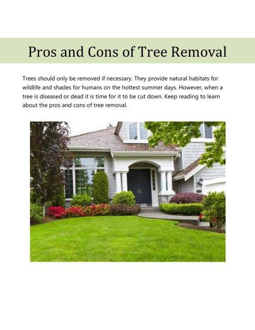 Pros and Cons of Tree Removal