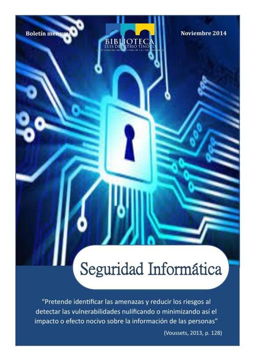Boletín Noviembre-Seguridad informática