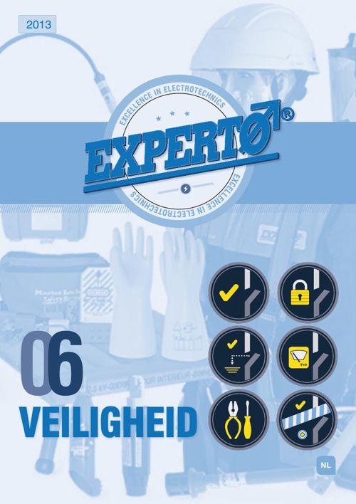 Experto Veiligheid 2013